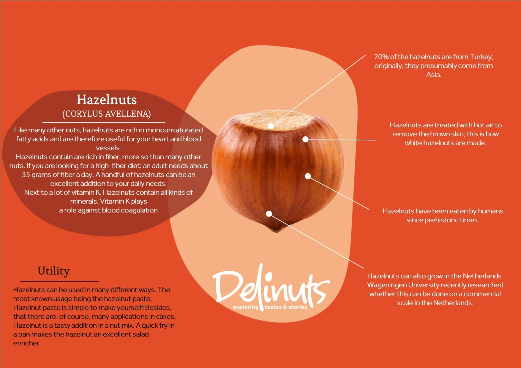 Hazelnut with information