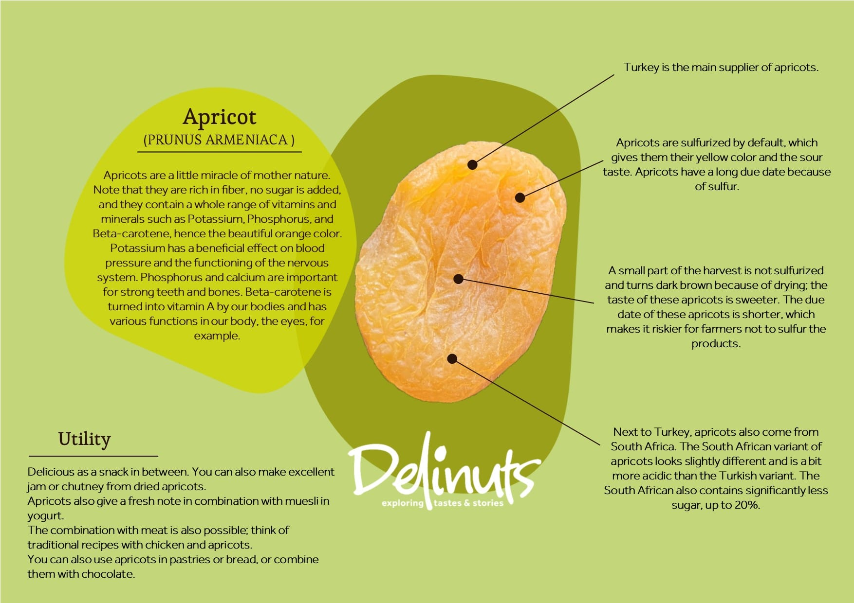 Apricot with information