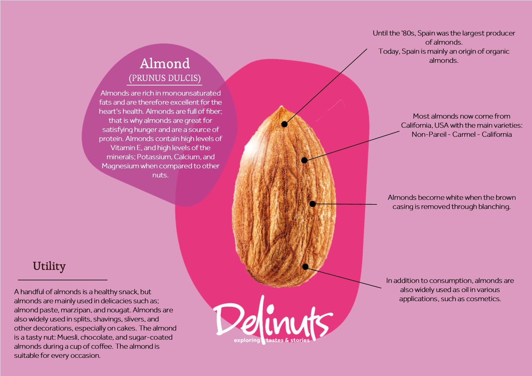 Almond with information