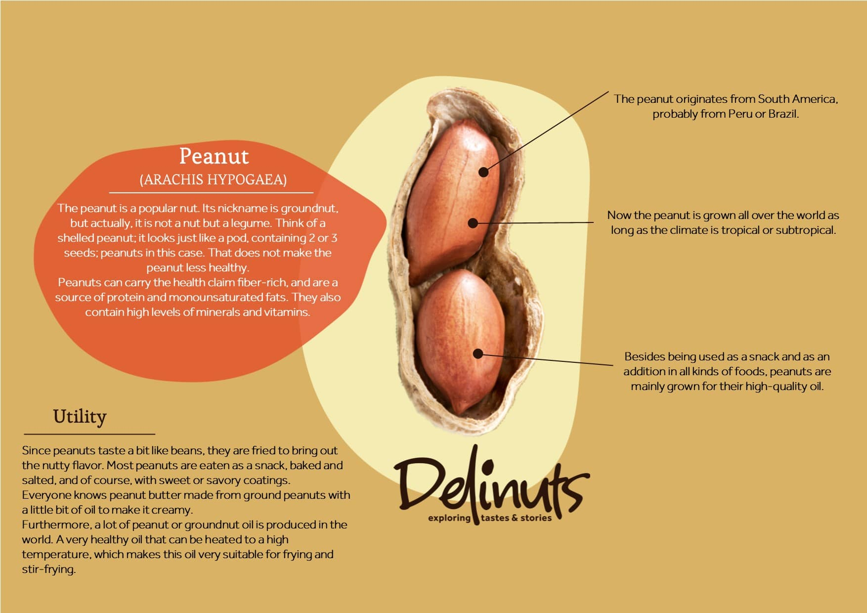 Peanut with information