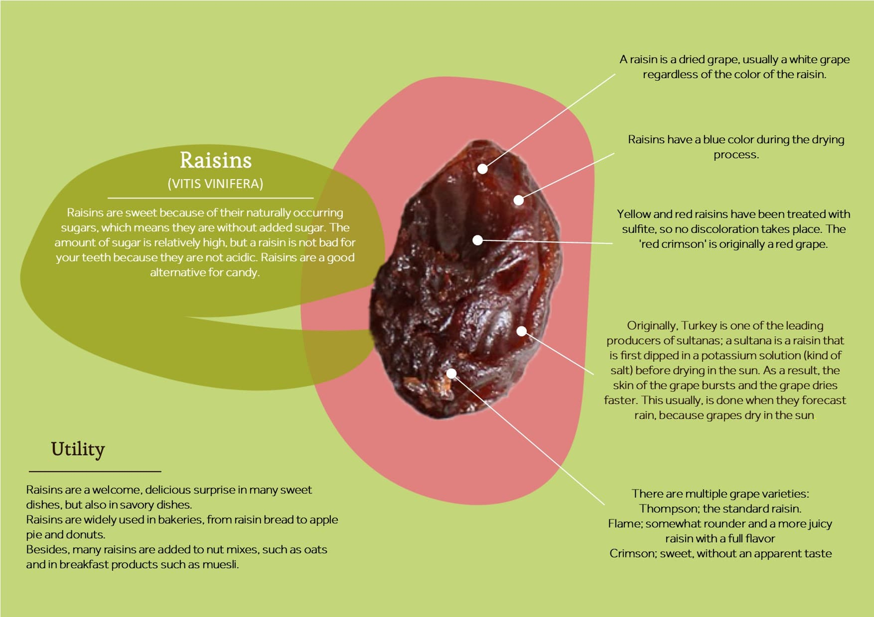 Raisin with information